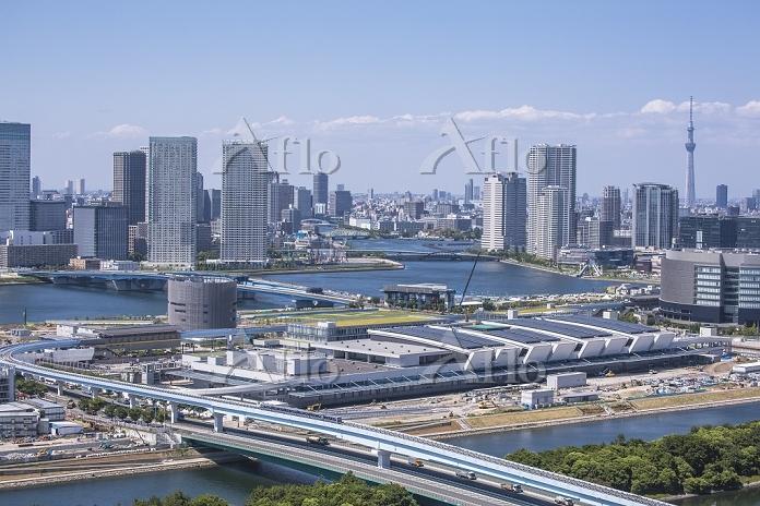豊洲市場建設現場と豊洲、晴海周辺のビル群