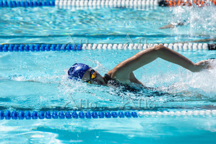 女子競泳 自由形