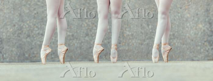 Closeup shot of legs of three ・・・