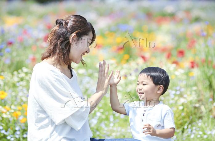 花畑とハイタッチをする日本人親子
