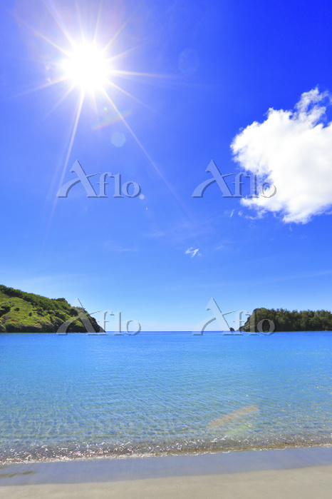 東京都 小笠原諸島 父島 小港海岸ビーチと夏の太陽