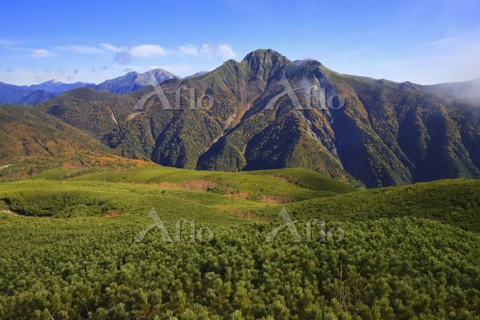 長野県 南アルプス烏帽子岳より望む朝の甲斐駒ケ岳と北岳と間ノ・・・