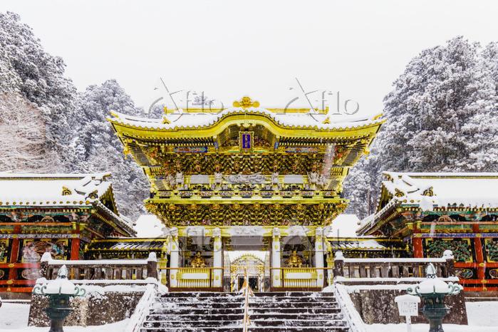 栃木県 日光東照宮 雪の日の陽明門