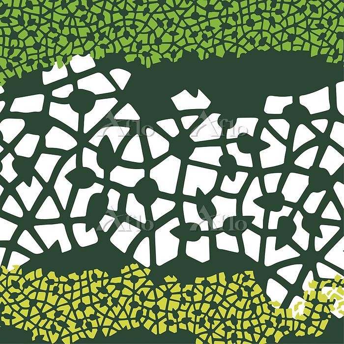 植物の模様