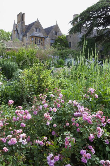 イギリス ヒドコット・マナー・ガーデン