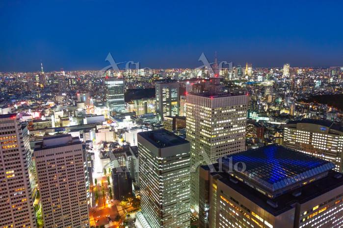 東京都 都庁から望む夜景