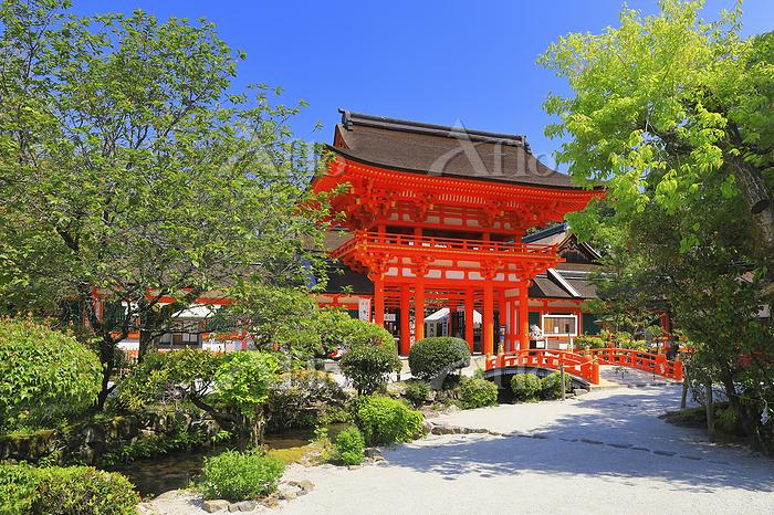 京都府 上賀茂神社 楼門と玉橋と参道の新緑