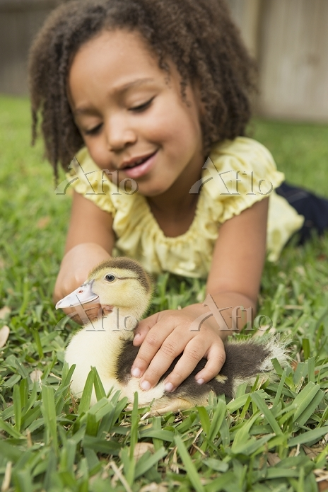 A girl petting a small ducklin・・・
