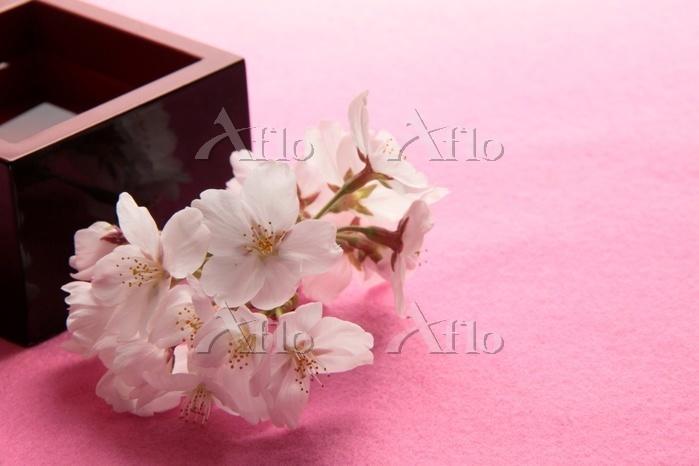 桜の花に升酒