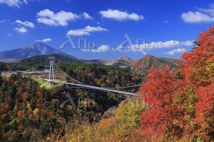 大分県 九重夢大吊橋と紅葉