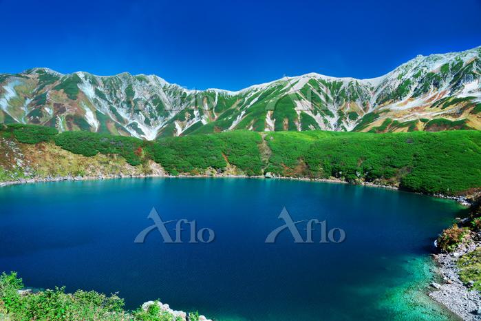 富山県 立山 みくりが池