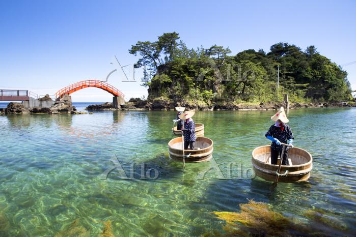 新潟県 小木のたらい舟
