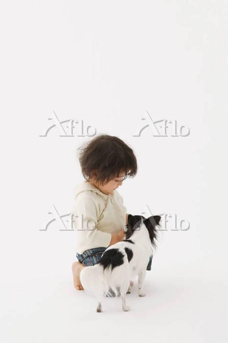しつけをする男の子と犬