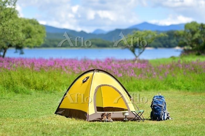 夏の高原・湖畔のキャンプ