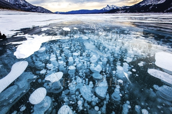 カナダ アブラハム湖 アイスバブル