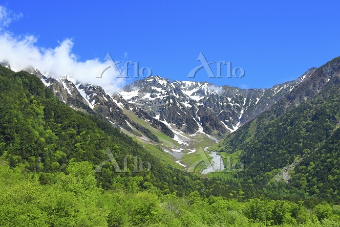 長野県 上高地 新緑の木々と残雪の奥穂高岳
