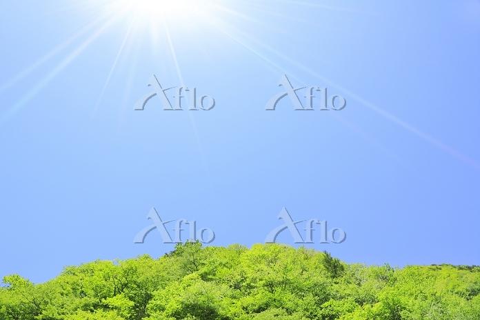 長野県 乗鞍高原 新緑の山と青空