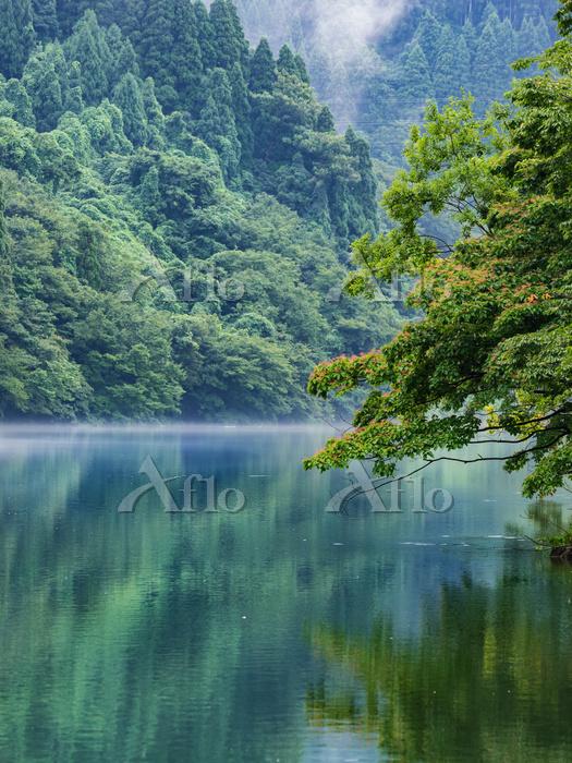 富山県 庄川峡