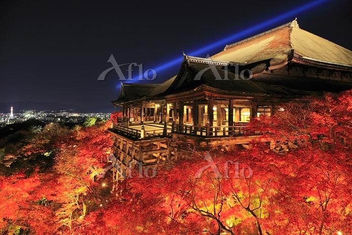 京都府 清水寺 紅葉のライトアップと本堂の舞台