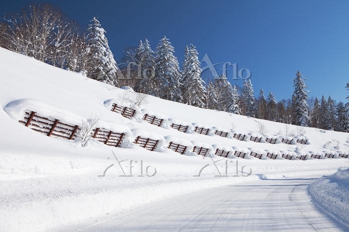 北海道 雪崩防止柵