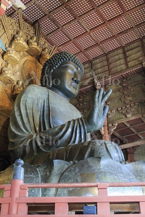 奈良県 奈良市 東大寺 大仏殿 奈良の大仏