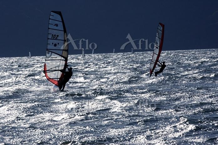 琵琶湖 ウィンドサーフィン