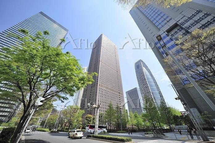 東京都 西新宿の高層ビル群