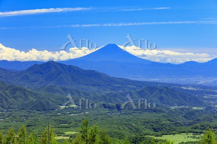 山梨県 清里テラスより富士山