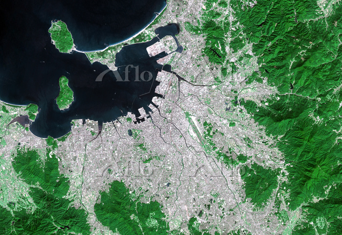 衛星画像 福岡市