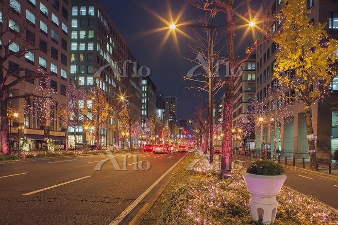 大阪府 御堂筋イルミネーション2013