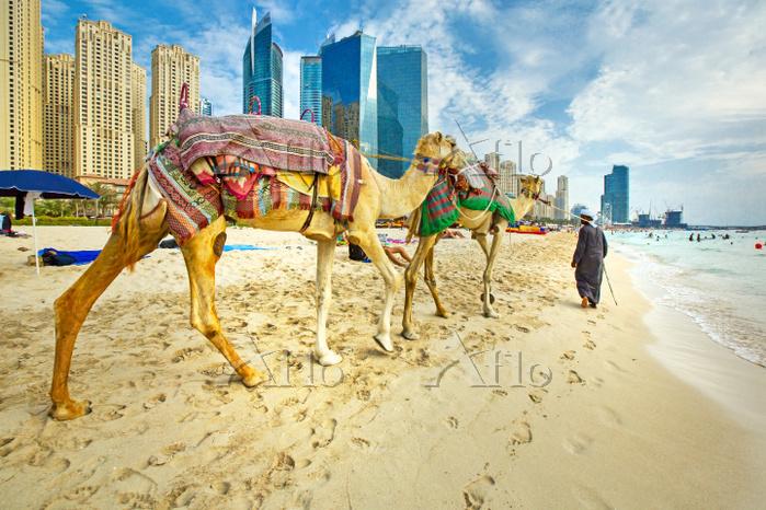 United Arab Emirates, Dubai, J・・・