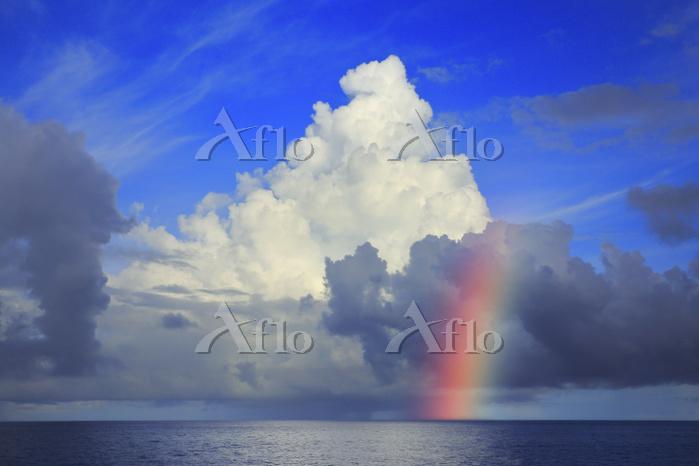 おがさわら丸から見る海上の入道雲