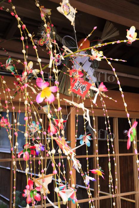 京都府 玄関先に飾られた正月の餅花飾り