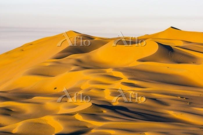 オマーン  ルブアルハリ砂漠