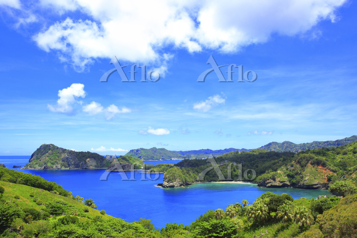 東京都 小笠原諸島 父島 中山峠から望むコペペ海岸と夏空