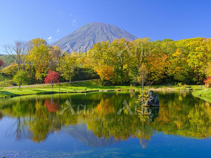 北海道 ふきだし公園と羊蹄山
