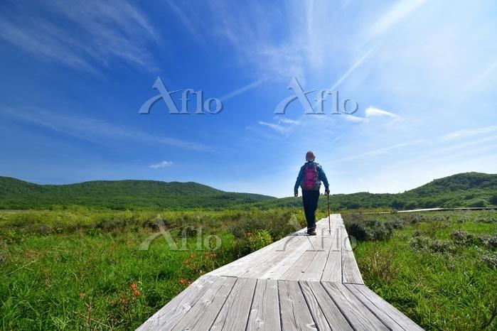 初夏の湿原 草原を歩くハイカー
