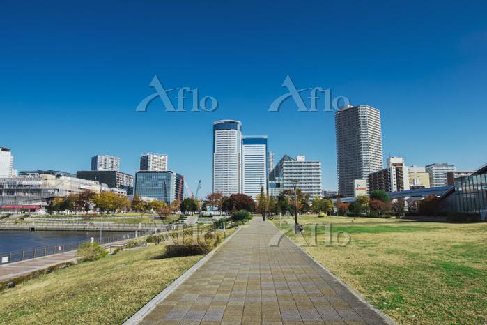 春海橋公園の遊歩道と豊洲のビル群