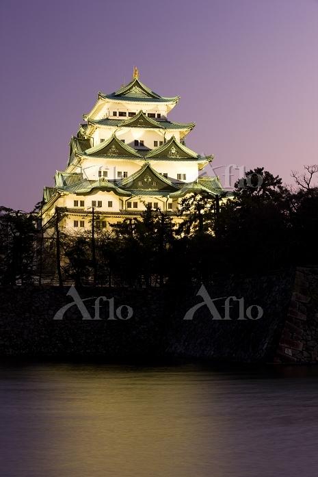 愛知県 名古屋城