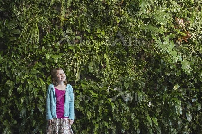 植物の壁と少女