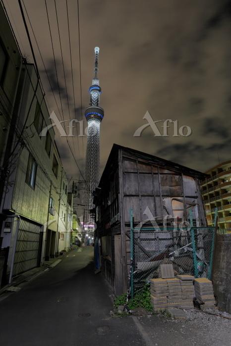 東京都 鎮魂ライトアップのスカイツリーの夜景