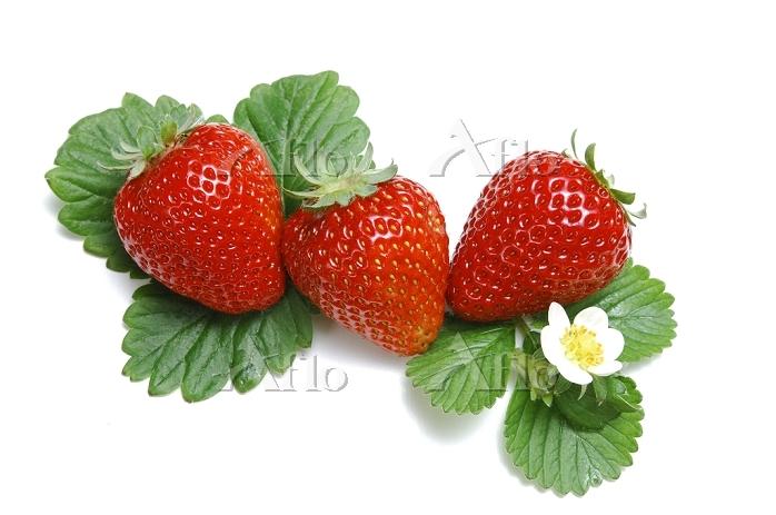 3個のイチゴ(さちのか)