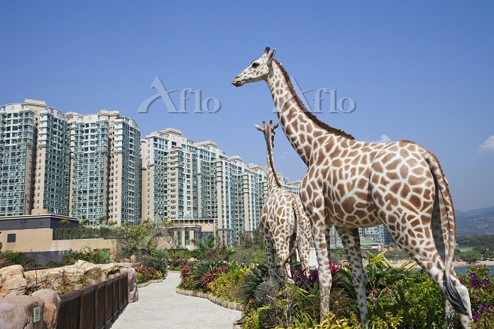 China,Hong Kong,Park Island,Li・・・