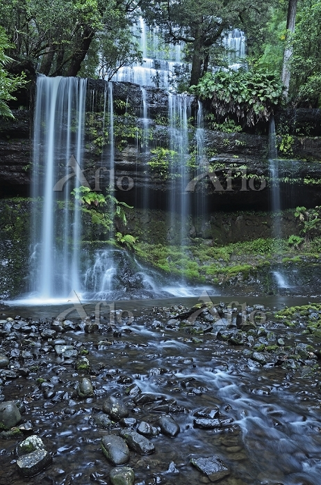 Russell Falls, Mount Field Nat・・・