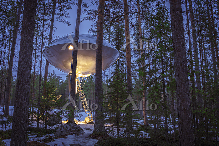 Accommodation in the woods, kn・・・