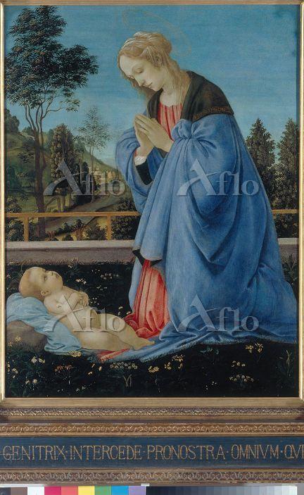 フィリッピーノ・リッピ 「幼児キリストを礼拝する聖母」