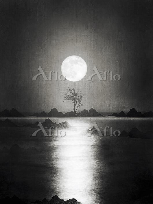 Atmospheric full moon reflecti・・・