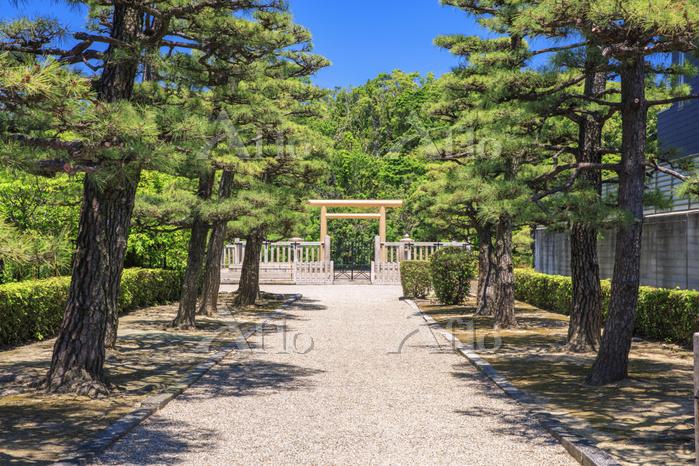 大阪府 新緑の履中天皇陵古墳