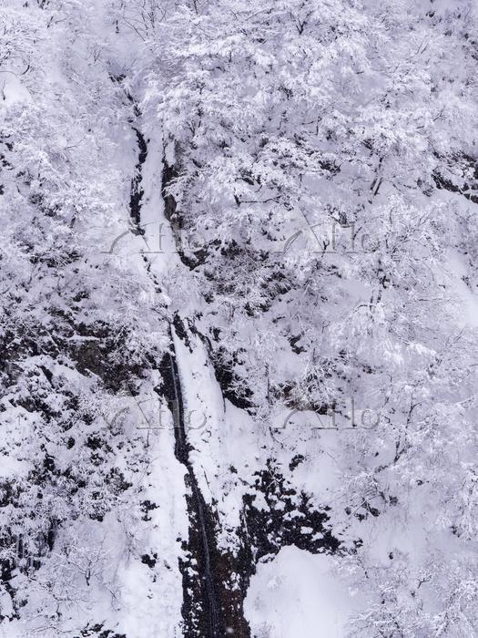 新潟県 雪降り
