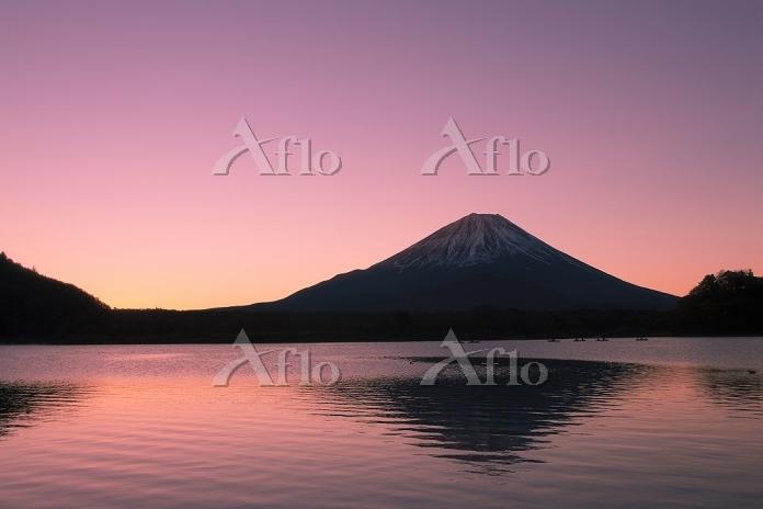 山梨県 精進湖から夜明けの富士山